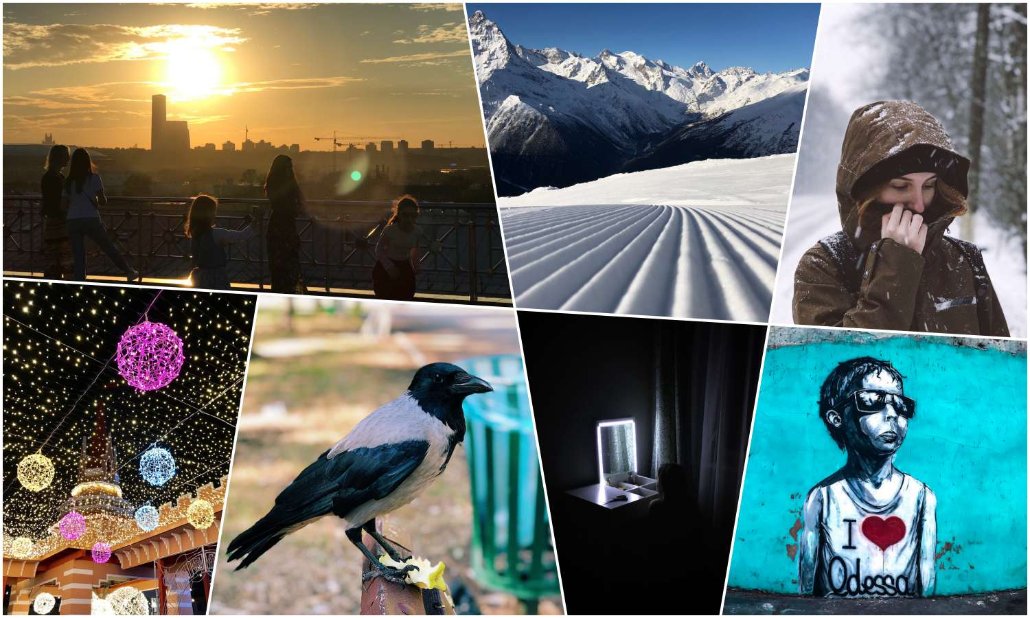 Gallery: What is your iPhone camera capable of?