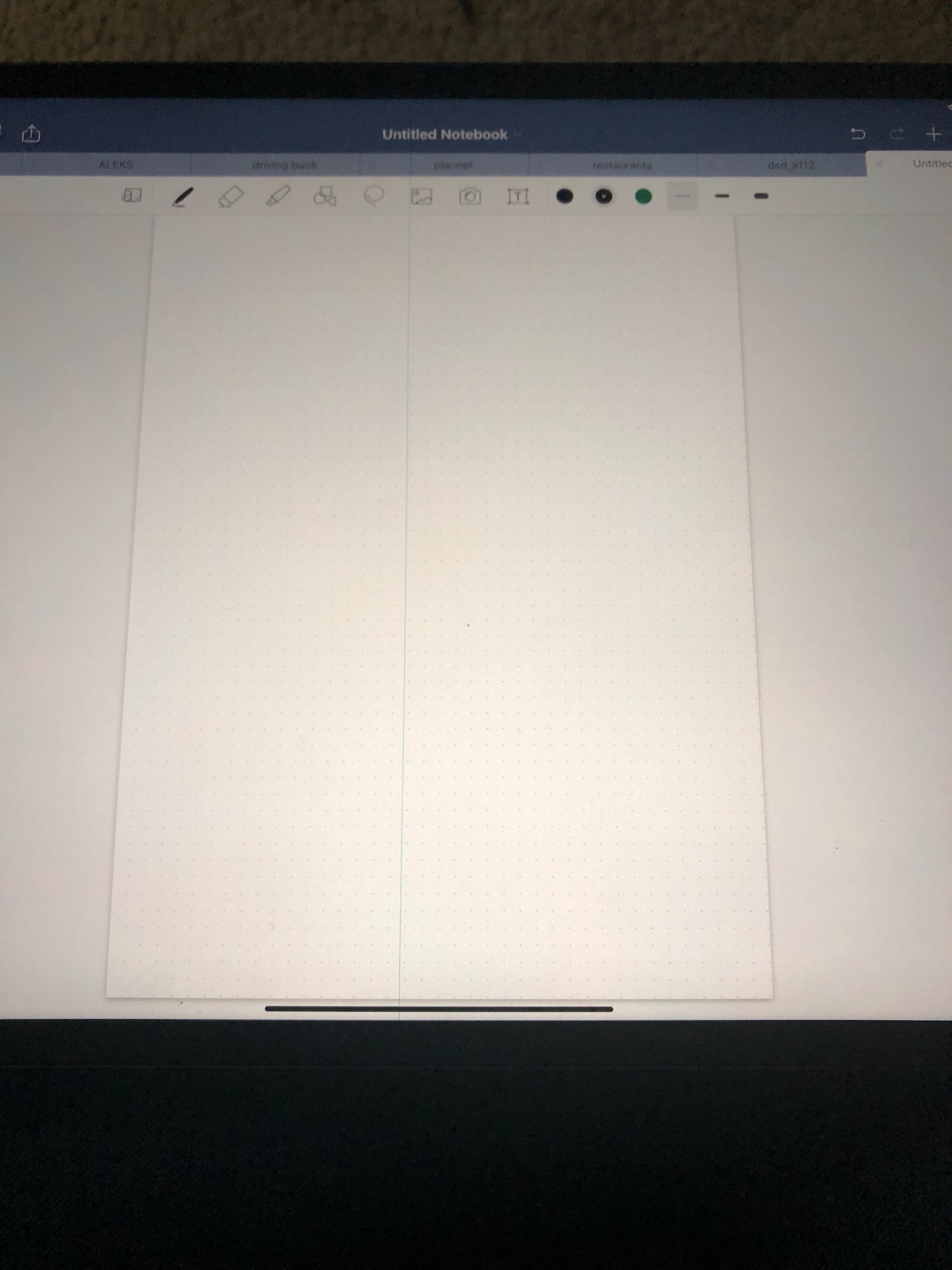 why does my ipad pro 12.9 have a blue line
